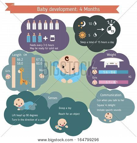 Child development infographics. Baby Growth Guide. Age 4 months.