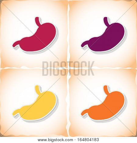 Human stomach. Flat sticker with shadow on old paper. Vector illustration