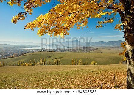 Autumn leaves over dam Liptovska Mara from Haj-Nicovo.