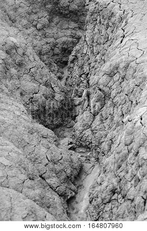 Black and white vertical close-up with dried ground Natural dry soil texture brown drought theme in rural arid area background for design.