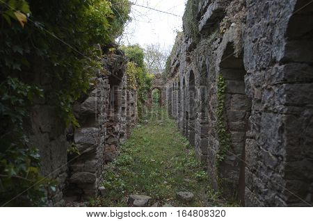 Castle ruins corridor overgrown covered in moss crass and ivy Ruthin Castle North wales UK