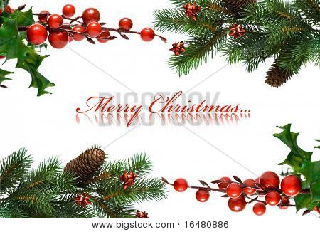 border from Christmas branches of fir-tree and european holly