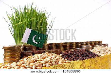 Pakistan Flag Waving With Stack Of Money Coins And Piles Of Wheat And Rice Seeds