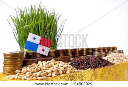 Panama Flag Waving With Stack Of Money Coins And Piles Of Wheat And Rice Seeds