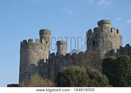 Conwy Castle south side showing blue sky background medieval castle in Britain, Europe. close shot of towers/ turrets poster
