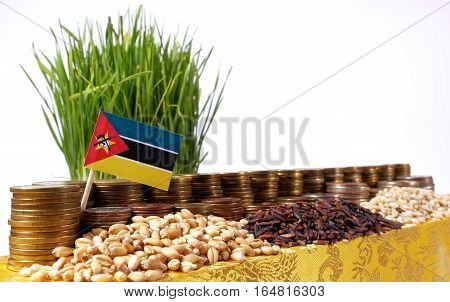 Mozambique Flag Waving With Stack Of Money Coins And Piles Of Wheat And Rice Seeds