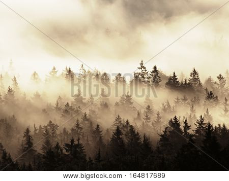 Beautiful Autumnal Landscape With Mountain View, Morning Foggy Valley