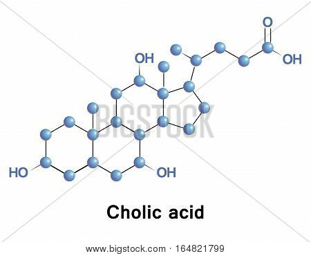 Cholic acid, along with chenodiol, is one of the two major bile acids produced by the liver, where it is synthesized from cholesterol.
