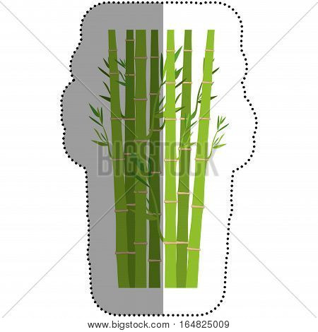 Bamboo icon. Plant nature decoration and asia theme. Isolated design. Vector illustration