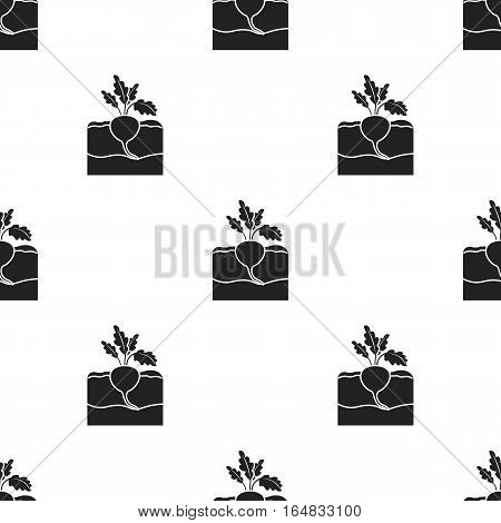 Beet icon in black style isolated on white background. Plant pattern vector illustration.