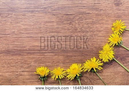 Frame made of yellow dandelions on a wooden background. Drug plants .Space for text. . Vintage floral background. Flora. Spring and Summer time.