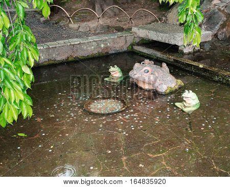 frog, money, profit, success yen japan water park pond