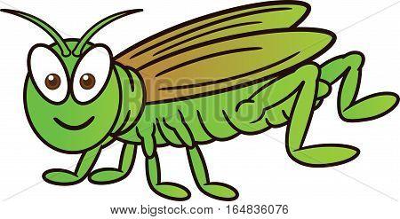 Grasshopper Cartoon Animal Character. Vector Illustration Isolated on White.