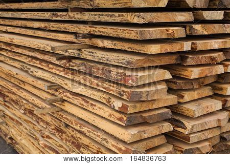 sawmill wood processing timber drying harvesting boards baulk hydrothermal treatment of wood mechanical wood processing