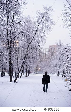 old man walking in winter in the city among snow-covered trees