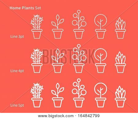 House plants white linear vector illustration with plants pots cactus leaf leaves. Natural ecology ecological house plants creative graphic concept. Natural eco decorative house plants set.