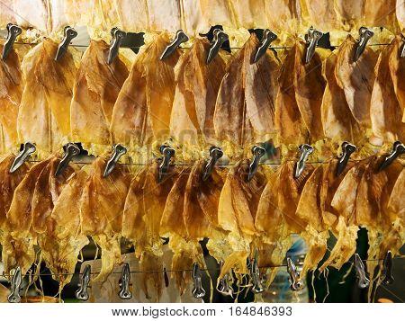Dried squid hanging in line for sale.