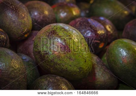 Fresh avocado in the market Temperate fruits.
