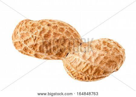 Single Peanut Isolated