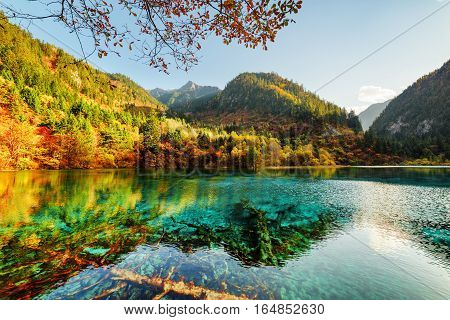 Amazing View Of The Five Flower Lake Among Beautiful Mountains