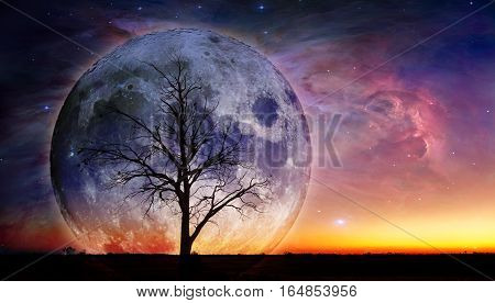 Fantasy Landscape - Lonely Bare Tree Silhouette With Huge Planet Rising Behind It.