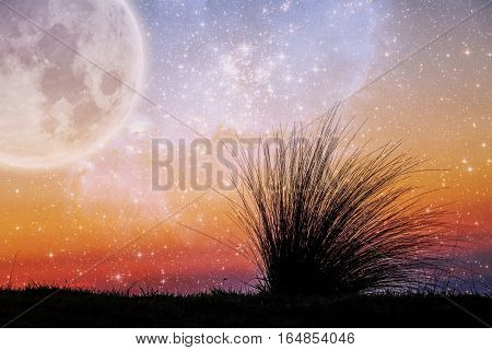 Alien Landscape Of Beach Grass Flexing In The Wind At Sunset With Galaxy Stars And Huge Planet In Th