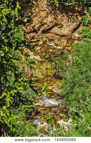 Pretty stream in the Wasatch Mountains is almost hidden from view