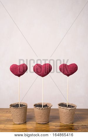 Three crocheted hearts in peat glasses on a wooden table.