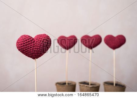 Crocheted hearts in peat glasses with a focus on one of them.
