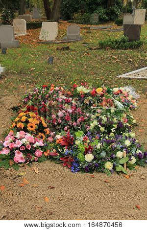 Various Fresh flowers on a grave after a funeral