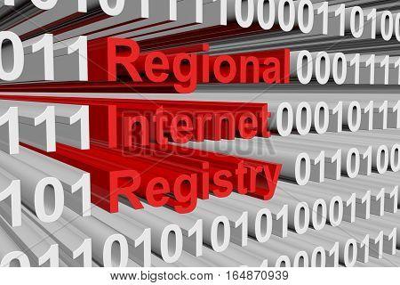 Regional Internet Registry in the form of binary code, 3D illustration