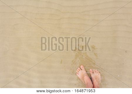 Two female bare feet on wet sand in the sea water