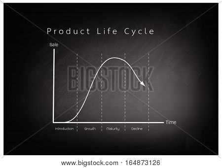 Business and Marketing Concepts 4 Stage of Product Life Cycle Chart on Black Chalkboard.