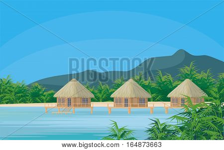Bungalows on the ocean surrounded by tropical plants. South sea landscape. Vector background