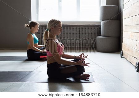 Two young women in yoga class making exercises. Girls do meditation lotus pose for relaxation. Healthy lifestyle in fitness club, backlight