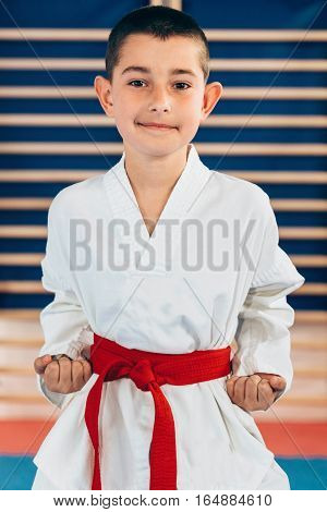 Portrait of tae kwon doe boy, toned image, indoor scene