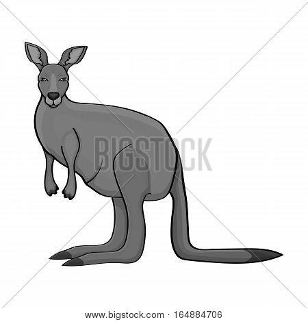 Kangaroo icon in monochrome design isolated on white background. Australia symbol stock vector illustration.