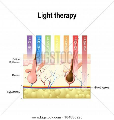 light therapy Phototherapy or laser therapy. Electromagnetic spectrum with colors of the various wavelengths in the human skin. Different light spectrums would penetrate the skin to different depths. Depth of penetration by wave light