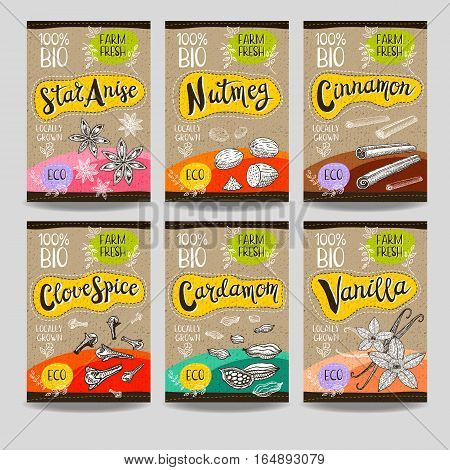 Set of colorful labels, sketch style, food, spices, cardboard texture. Cinnamon, vanilla, cardamom, star anise, nutmeg, clove. Spices, vegan food, organic product. Hand drawn vector illustration.