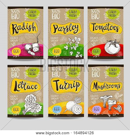 Set of colorful labels, sketch style, food, spices, cardboard texture. Radish, parsley, tomatoes, lettuce, turnip, mushrooms. Vegetables, farm fresh, locally grown. Hand drawn vector illustration.