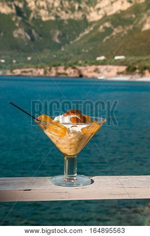The bowl of greek yogurt with caramelized grapes for breakfast on the seascape background. Greek yogurt with caramelized grapes. Vertical. Daylight.