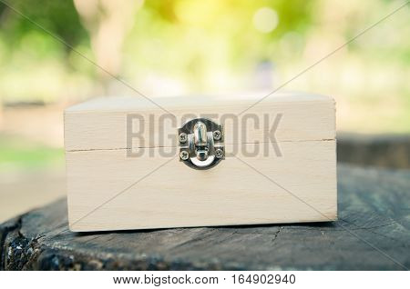 treasure chest with blurred green nature background