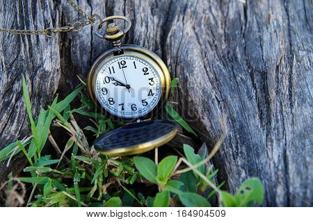 vintage pocket watch on wood and grass
