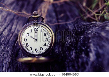 vintage pocket watch on wood log background