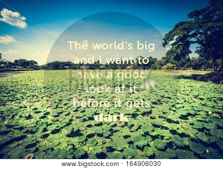 Inspirational quote on natural pond with plenty of lotus background.
