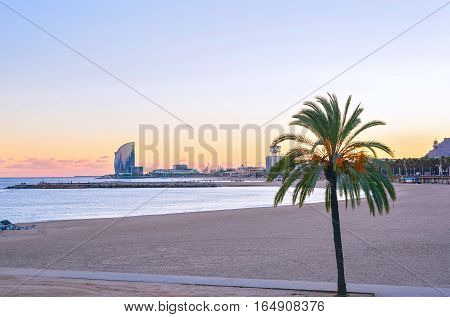 Beautiful Barcelona Beach at sunset Platja Nova Icaria or Barceloneta view