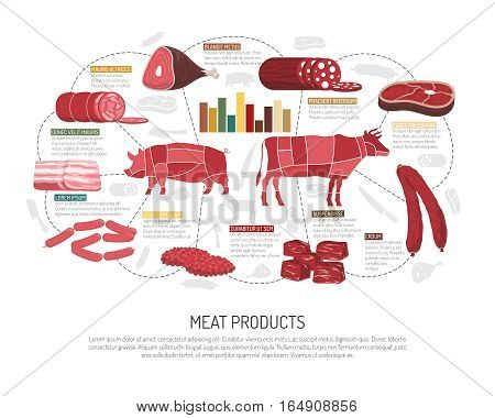 Meat market product variety infographic presentation  with pork lamb beef sausages ham bacon and delicatessen flat vector illustration