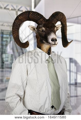 Businessman with Head of a Goat at office.