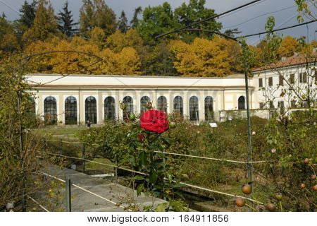 Monza (Brianza Lombardy Italy): garden of the historic Royal Palace at fall. Flowers