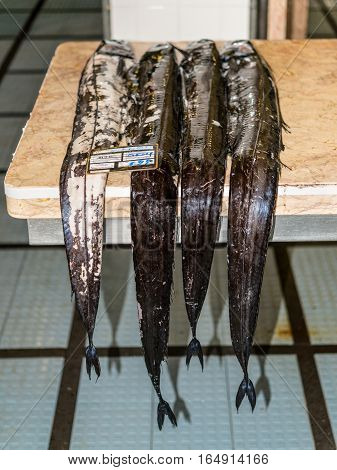 Funchal Madeira Portugal - December 10 2016: Black scabbard fish (espada in portuguese) in fish market of Funchal Madeira Portugal. Fish from Atlantic ocean.
